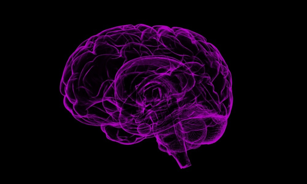 Conoce los diferentes tipos de memoria de la mente humana